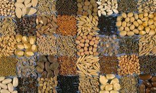 Σπόροι που μας χαρίζουν υγεία!