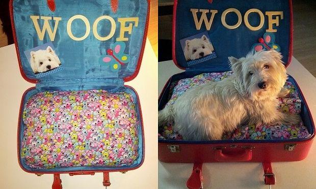 Μετατρέψτε την παλιά σας βαλίτσα σε κρεβάτι για το σκύλο ή τη γάτα σας!