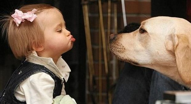 Τα ζώα είναι οι καλύτεροι φίλοι των παιδιών (βίντεο)