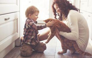 Τοξοπλάσμωση: Πώς επιδρά στον εγκέφαλο το παράσιτο που μεταδίδει η γάτα