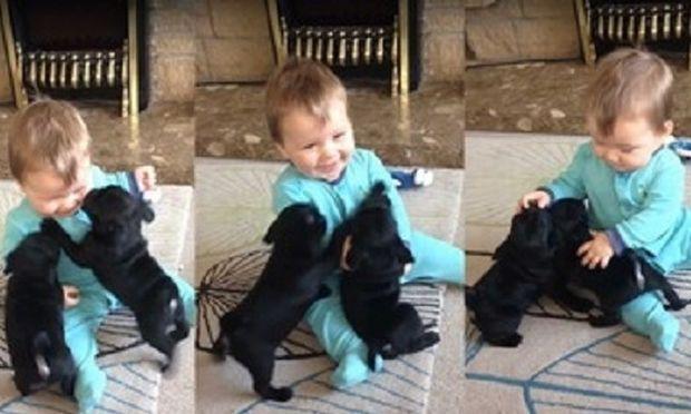 Το μωρό που τρελαίνεται να το αγκαλιάζουν κουταβάκια (βίντεο)