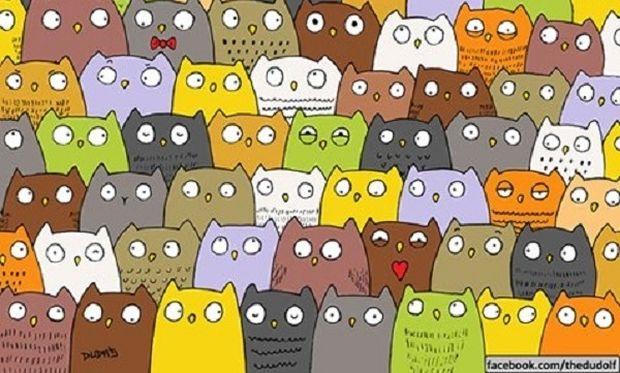 Nέος γρίφος: Μπορείτε να βρείτε τη γάτα ανάμεσα στις κουκουβάγιες;
