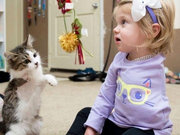 Το κοριτσάκι έχασε το χέρι του από καρκίνο και υιοθετεί ακρωτηριασμένο γατάκι! (photos+video)
