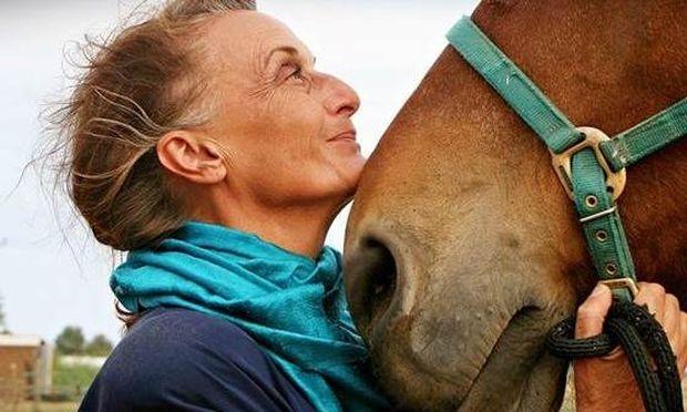 Ιππόλυση: Το κέντρο που σώζει άλογα!