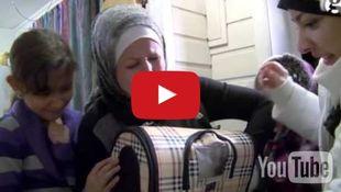 Η «οδύσσεια» ενός γάτου – πρόσφυγα και η συγκινητική επανένωση με την οικογένειά του