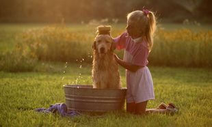 Μάθετε το παιδί σας πώς να καλλωπίζει και πώς να κάνει μπάνιο το σκύλο του!