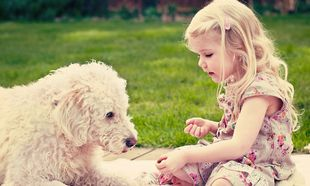 Πώς θα βοηθήσετε τα παιδιά σας να ξεπεράσουν το φόβο τους για τα σκυλιά