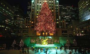 Αυτά είναι τα πιο εντυπωσιακά χριστουγεννιάτικα δέντρα στον κόσμο