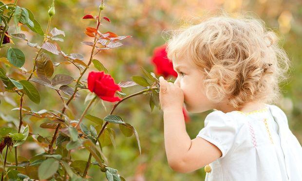 5 απίθανες επιδράσεις που εχει η επαφή με τη Φύση στα παιδιά -  Mothersblog.gr