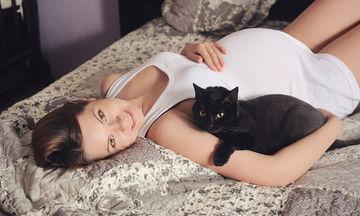 Τοξοπλάσμωση και εγκυμοσύνη: Τι κινδύνους κρύβει; (vid)