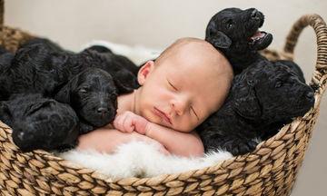 Νεογέννητο μωρό σε απίθανες πόζες με νεογέννητα κουταβάκια «ρίχνουν» το Διαδίκτυο