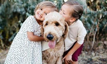Πώς θα προστατεύσετε το παιδί σας από δάγκωμα σκύλου