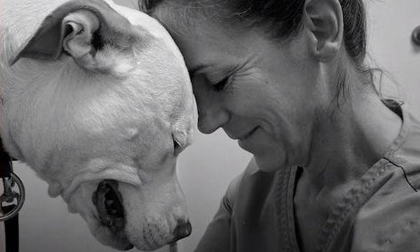 Υιοθέτησε ένα σκύλο και η ζωή της άλλαξε εντελώς (video)