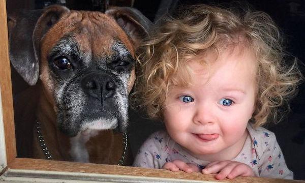 Φωτογραφίες που δείχνουν τη φιλία ανάμεσα σε ένα παιδί και έναν σκύλο (pics)