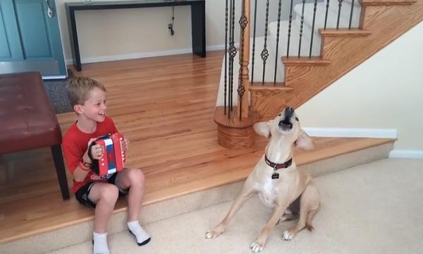 Πολύ γέλιο: Παιδί και σκύλος αποτελούν μία «αχτύπητη» μπάντα (video)