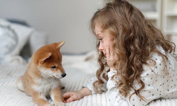 Πώς μπορούμε να βοηθήσουμε ένα παιδί να κατανοήσει την απώλεια του κατοικίδιου