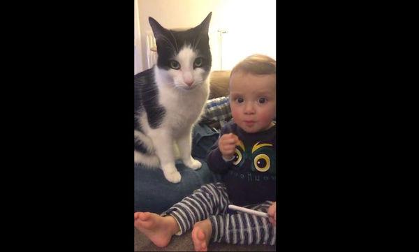 Δείτε  με ποιο τρόπο η γάτα δείχνει την τρυφερότητά της στο αγοράκι