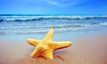 Ζώδια Σήμερα 21/6: Θερινό Ηλιοστάσιο και Ήλιος στον Καρκίνο – Επιστροφή στις ρίζες!