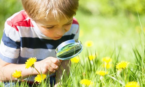 Εντομοσκόπιο διαφανές για τους μικρούς εξερευνητές της φύσης
