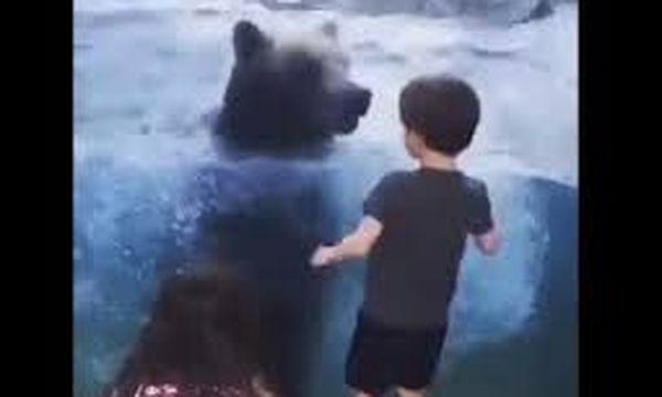 Απίστευτο! Πελώρια αρκούδα χοροπηδά χαρούμενη παρέα με δύο παιδιά (video)