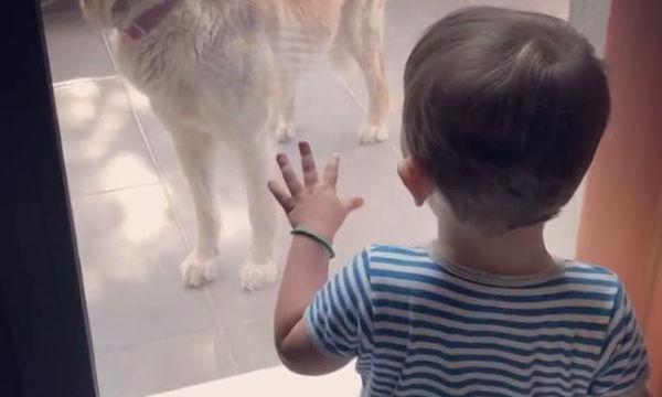 Γιος Ελληνίδας παρουσιάστριας έχει μια αξιολάτρευτη συνομιλία με τον σκύλο τους (vid)