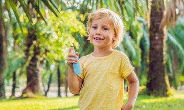 Φυσικά εντομοαπωθητικά για κουνούπια: 5 σπιτικά έλαια για να τα διώξετε μακριά σας