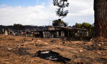 Ινστιτούτο Prolepsis: Κάλυψη αναγκών ψυχικής υγείας για τους πληγέντες από τις πυρκαγιές