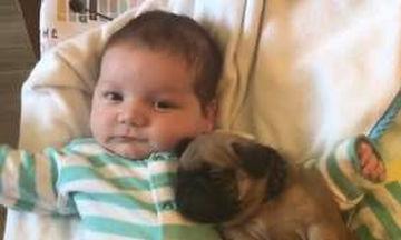 Είναι μωρά και έχουν γίνει ήδη οι καλύτεροι φίλοι (vid)