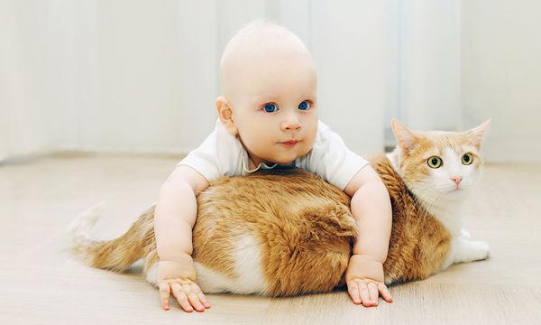 Νόσος εξ ονύχων γαλής: Τι κινδύνους κρύβει για το μωρό σας η γρατζουνιά ή το δάγκωμα μιας γάτας
