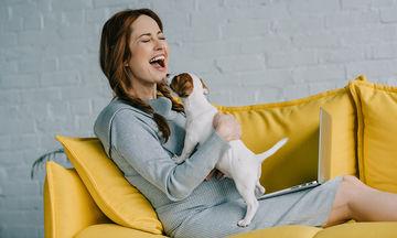 Μπορούν οι σκύλοι και οι γάτες να αισθανθούν μία εγκυμοσύνη;