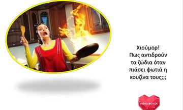 Πήρε φωτιά… η κουζίνα σου; Δες πώς θα την σβήσεις