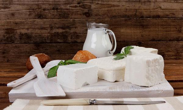 Κατσικίσια γαλακτοκομικά προϊόντα: Γιατί πρέπει να τα επιλέξετε για την οικογένειά σας
