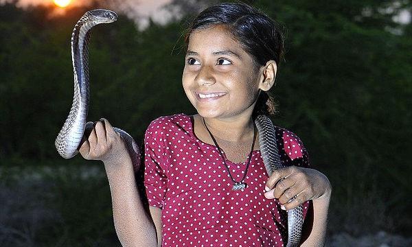 Οι καλύτερες φίλες ενός 8χρονου κοριτσιού είναι έξι... κόμπρες (vid)