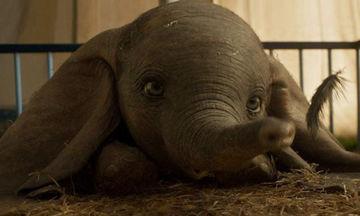 Έχετε δει το τρέιλερ της νέας ταινίας «Ντάμπο το ελεφαντάκι»; Πάρτε χαρτομάντιλα (vid)
