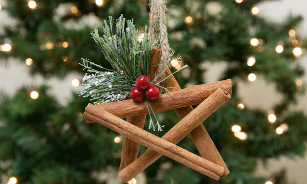 Εντυπωσιακά χριστουγεννιάτικα στολίδια από κανέλα - Δείτε πώς θα τα φτιάξετε (pics +vid)