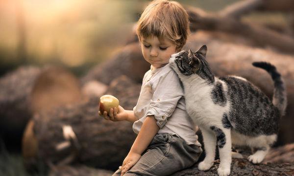 Μαμά αποτυπώνει σε φωτογραφίες τη μοναδική σχέση του γιου της με τις γάτες (pics)