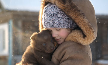 Πώς οι σκύλοι αποκρίνονται στο κρύο;