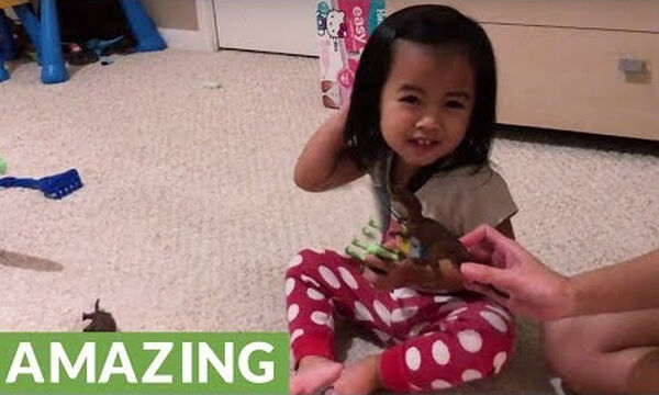 Δείτε τι μπορεί να κάνει αυτή η 2χρονη μέσα σε δύο λεπτά (vid)