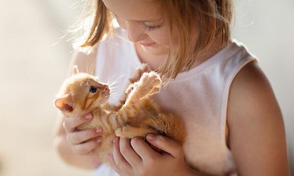 Γιατί μιλάμε μωρουδιακά (baby talk) στα γατάκια μας;