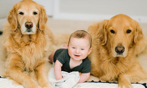 Μοναδικές φωτογραφίες περιγράφουν τη σχέση ανάμεσα στο μωρό και τα κατοικίδια της οικογένειας (pιcs)