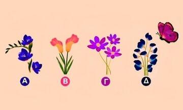 Σε ποιο λουλούδι θα καθίσει η πεταλούδα;