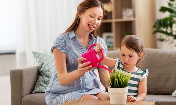 Χρυσοί κανόνες για να ποτίσετε σωστά τα φυτά εσωτερικού χώρου