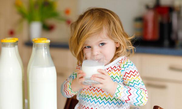 Ο διατροφολόγος Κωσταντίνος Ξένος αποκαλύπτει όλα όσα πρέπει να ξέρουμε για το ασβέστιο (vid)