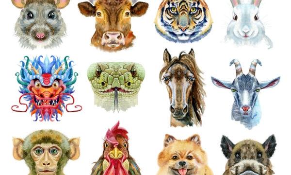 Κινέζικη Αστρολογία: 9 ενδιαφέροντα πράγματα που σίγουρα δε γνωρίζεις!