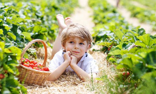 Αυτές οι πέντε τροφές δεν πρέπει να λείπουν από το διατροφολόγιο του παιδιού σας!