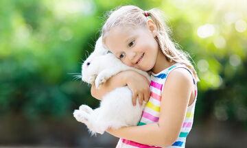 Σκέφτεστε να πάρετε ένα κουνέλι για το παιδί σας; Τι πρέπει να γνωρίζετε
