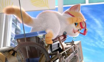 Ο γάτος ο φευγάτος: Ταινία για παιδιά (pics)