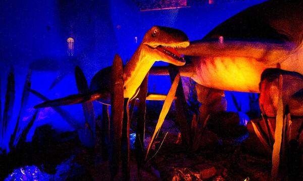 «Δεινόσαυροι και τέρατα των θαλασσών»: Διαδραστική έκθεση για την εξέλιξη της θαλάσσιας ζωής