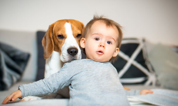 Δείτε τι κάνει το σκυλάκι στο μωρό της οικογένειας - Θα λιώσετε! (vid)