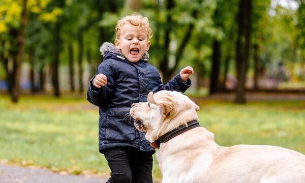 Γνωρίζετε τι πρέπει να κάνετε αν σας επιτεθεί σκύλος; (vid)